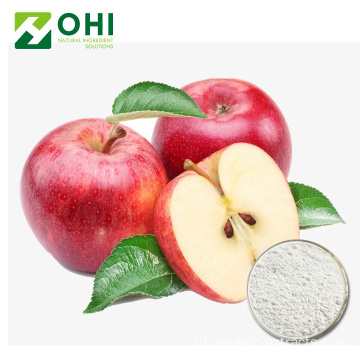 Apple Ekstrak Polyphenols Powder 50 ~ 80% UV-VIS